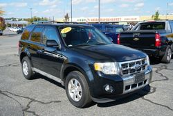 2009 Ford Escape Limited, One Owner! Clean Carfax!